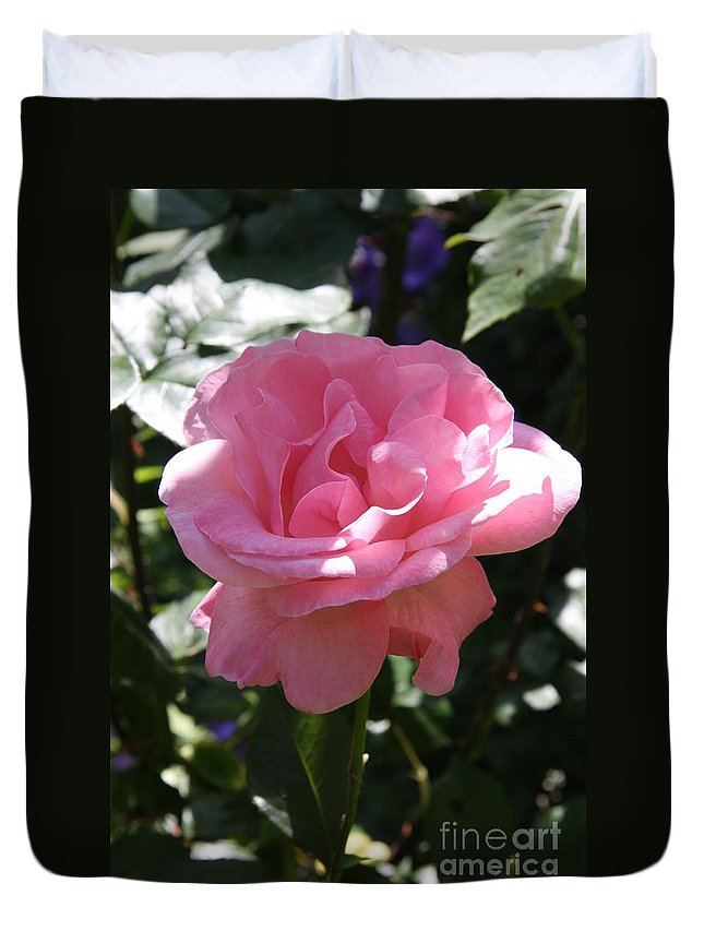 Rose Duvet Cover featuring the photograph Pink Rose by Christiane Schulze Art And Photography
