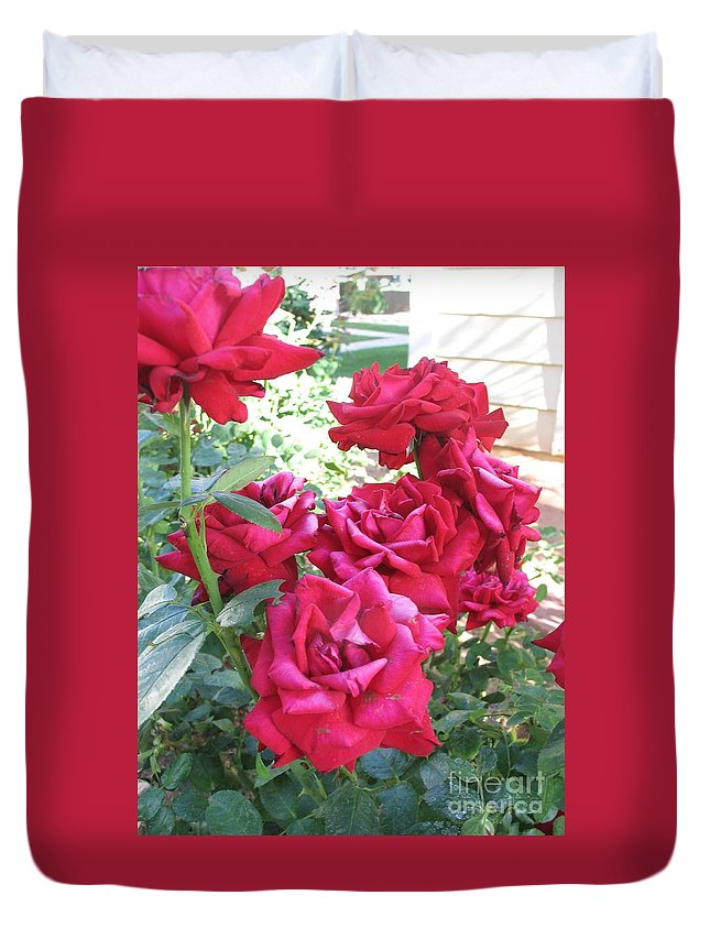 Photography Duvet Cover featuring the photograph Pink Roses by Chrisann Ellis
