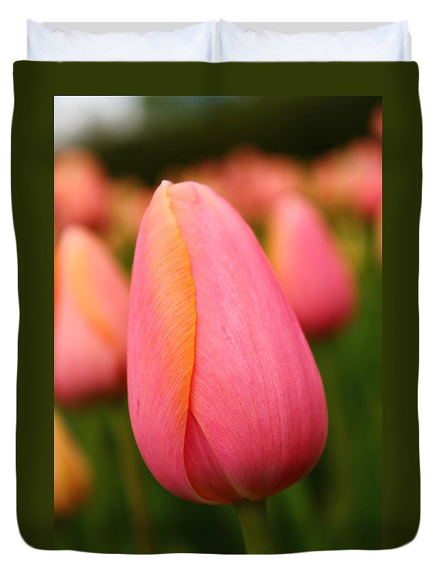 Tulip Duvet Cover featuring the photograph Pink Silk by Catie Canetti