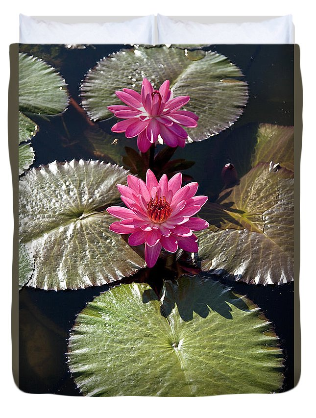 Water Llilies Duvet Cover featuring the photograph Pink Water Lily IIi by Heiko Koehrer-Wagner