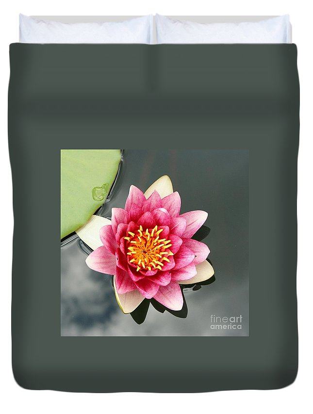Waterlily Duvet Cover featuring the photograph Pink Waterlily And Cloud Reflection by Christiane Schulze Art And Photography