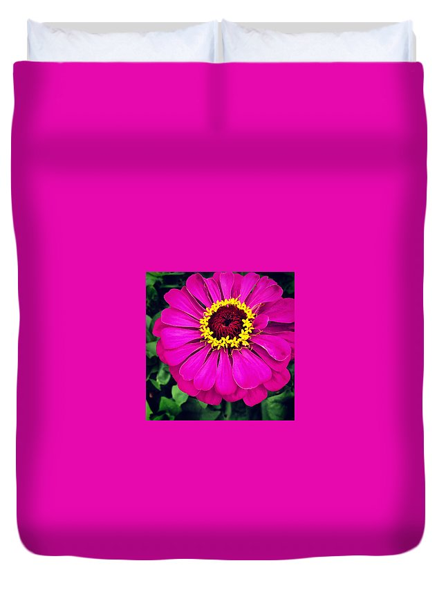 Flower Duvet Cover featuring the photograph Pink Zinnia by Angela Rath