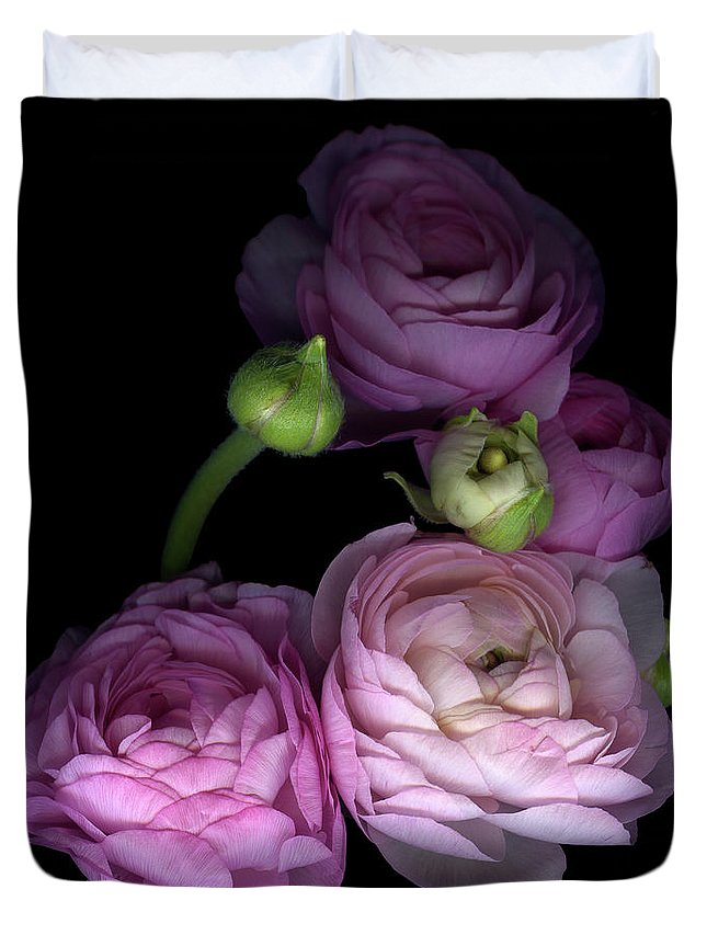 Bud Duvet Cover featuring the photograph Pinkalicius Ranunculus... Pink For by Photograph By Magda Indigo