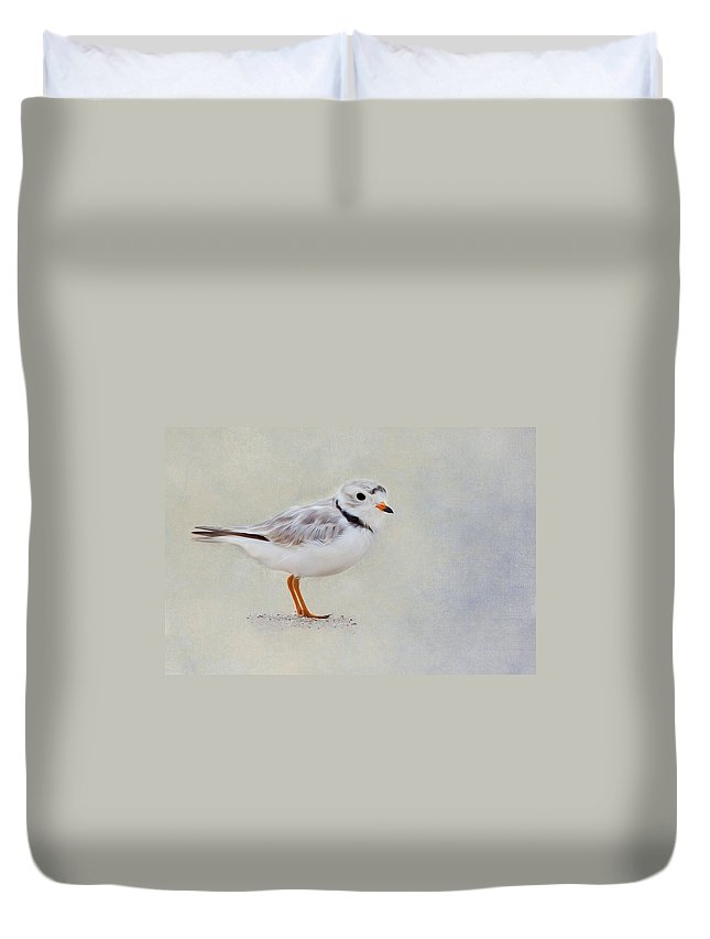 Plover Duvet Cover featuring the photograph Piping Plover by Bill Wakeley