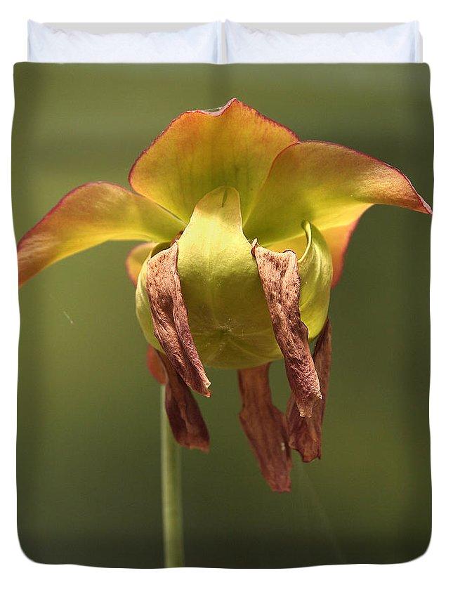 Pitcher Plant Duvet Cover featuring the photograph Pitcher Plant Flower by Liz Leyden