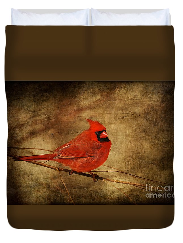 Bird Duvet Cover featuring the photograph Please Feed The Birds by Lois Bryan