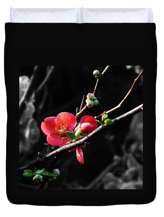 Morning Duvet Cover featuring the photograph Plum Blossom 3 by Xueling Zou