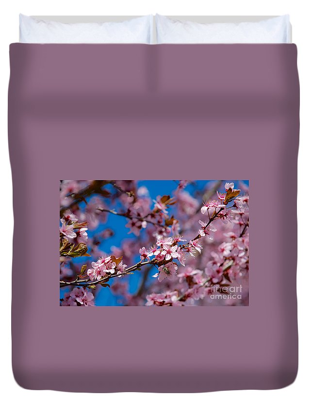 Buds Duvet Cover featuring the photograph Plum Flowers And Honey Bee by Mark Dodd