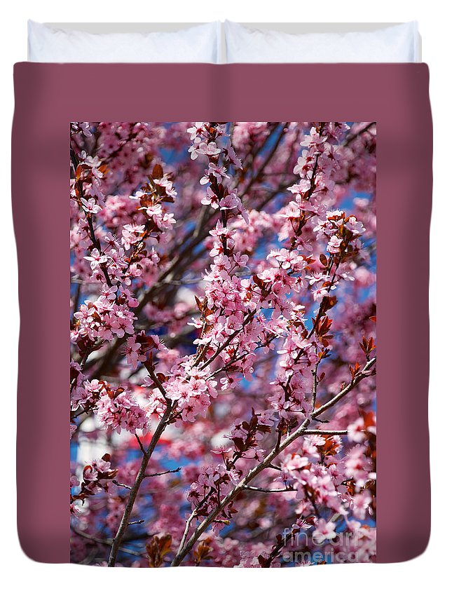 Buds Duvet Cover featuring the photograph Plum Tree Flowers by Mark Dodd