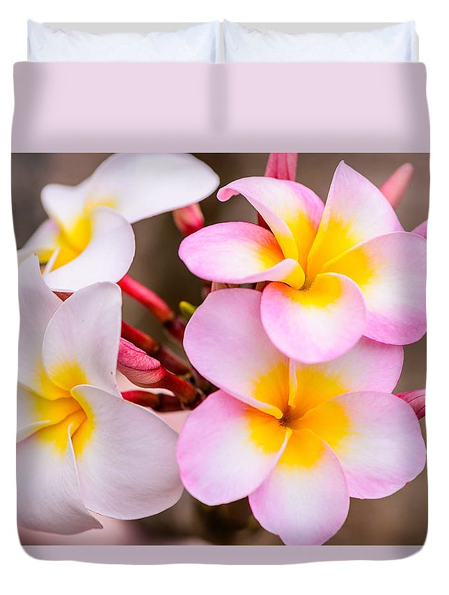 Flowers Duvet Cover featuring the photograph Plumerias Of Paradise 12 by Jason Chu