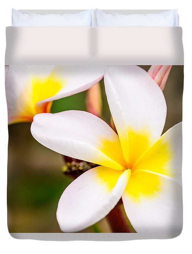 Flowers Duvet Cover featuring the photograph Plumerias Of Paradise 13 by Jason Chu