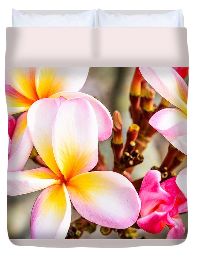 Flowers Duvet Cover featuring the photograph Plumerias Of Paradise 5 by Jason Chu