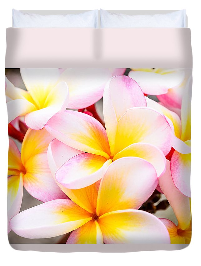 Flowers Duvet Cover featuring the photograph Plumerias Of Paradise 6 by Jason Chu