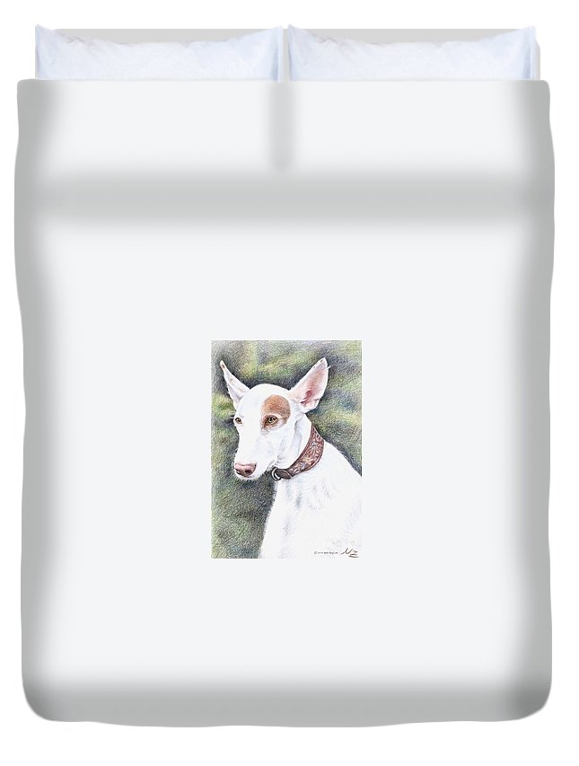 Dog Duvet Cover featuring the drawing Podenco Ibicenco by Nicole Zeug