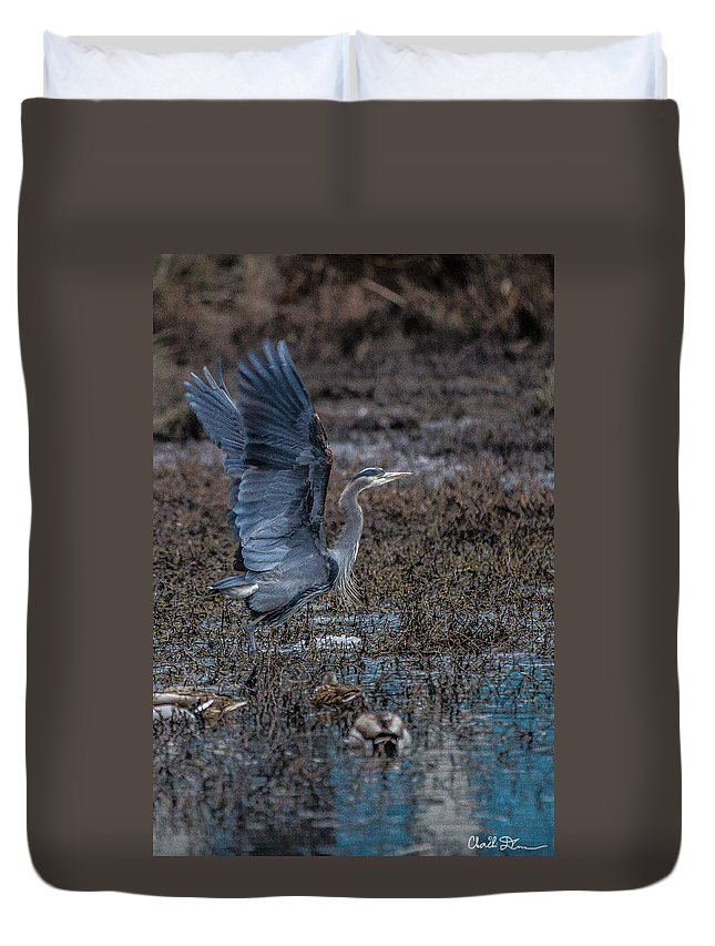Blue Duvet Cover featuring the photograph Poised For Flight by Charlie Duncan