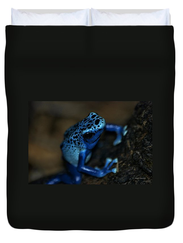 Animals Duvet Cover featuring the digital art Poisonous Blue Frog 02 by Thomas Woolworth