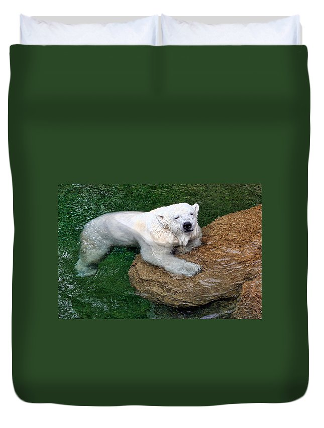 Polar Bear Duvet Cover featuring the photograph Polar Bear by David Sanchez