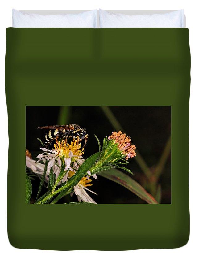 Bee Duvet Cover featuring the photograph Pollen by Jonathan Davison