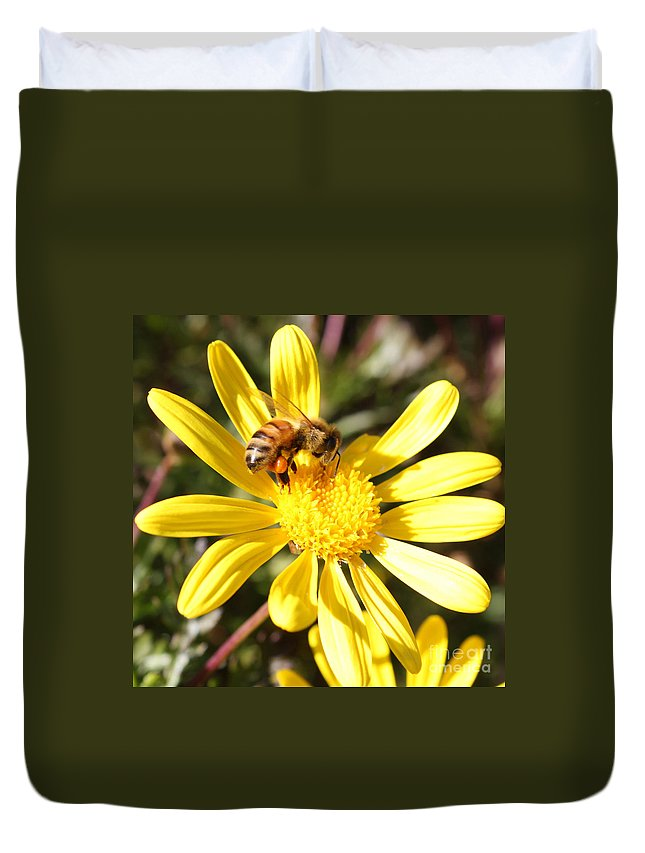 Bee Duvet Cover featuring the photograph Pollen-laden Bee On Yellow Daisy by Carol Groenen