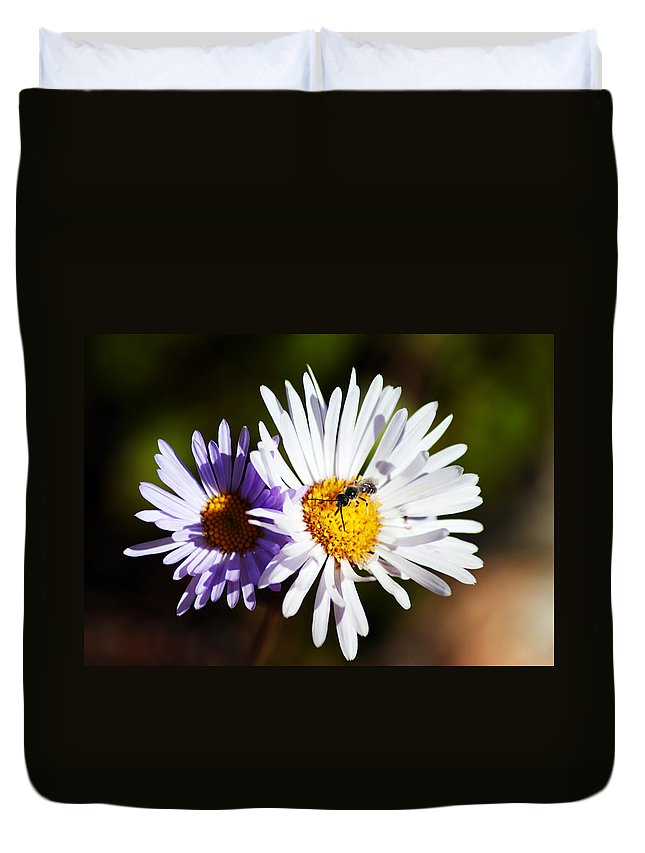 Wildflower Duvet Cover featuring the photograph Pollination by Brian Kerls