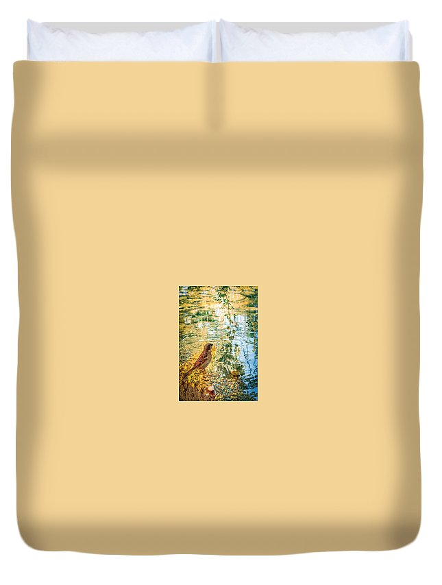 Desert Botanical April Duvet Cover featuring the photograph Pondering by Diane Wood