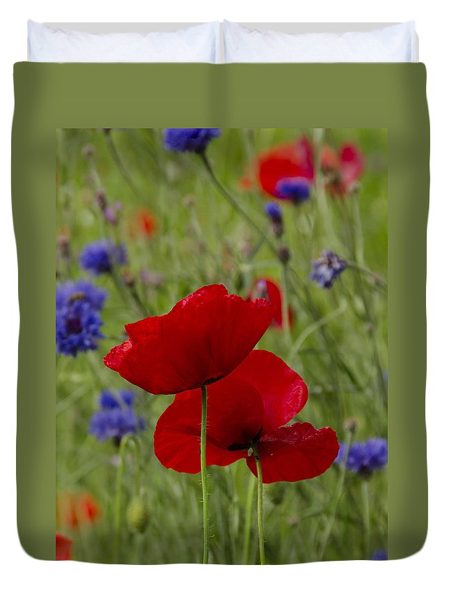 Flower Duvet Cover featuring the photograph Poppies And Cornflowers by TouTouke A Y