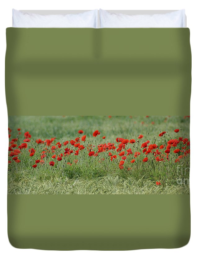 Poppies Duvet Cover featuring the photograph Poppies by Carol Lynch