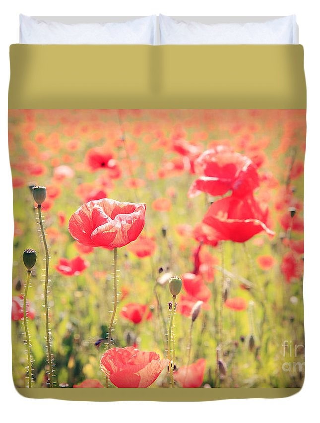Vintage Duvet Cover featuring the photograph Poppies In Tuscany - Italy by Matteo Colombo