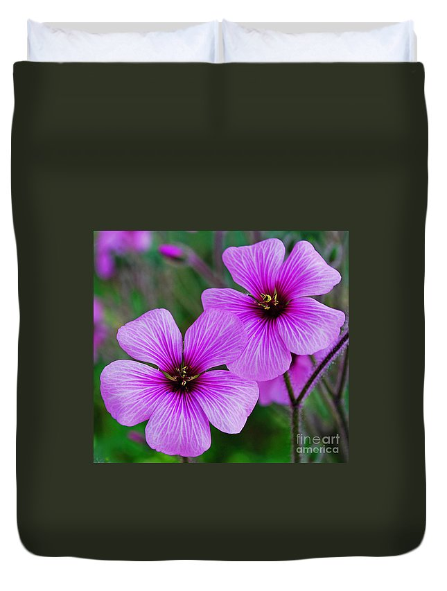 Poppy Duvet Cover featuring the photograph Poppies by Luis Alvarenga