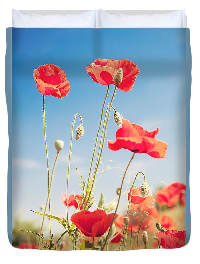 Poppies Duvet Cover featuring the photograph Poppies by Matteo Colombo