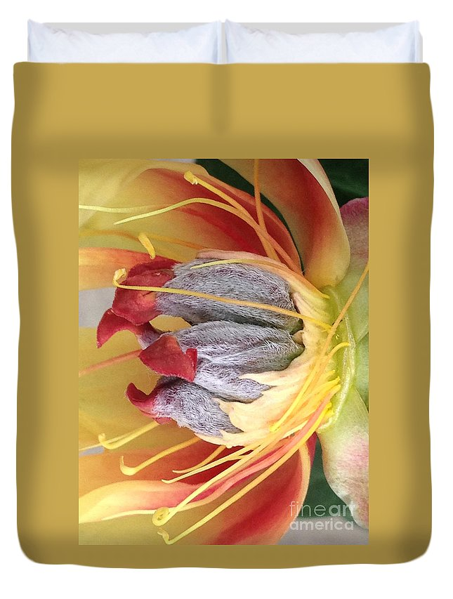 Yellow Duvet Cover featuring the photograph Poppy 4 by Jacklyn Duryea Fraizer
