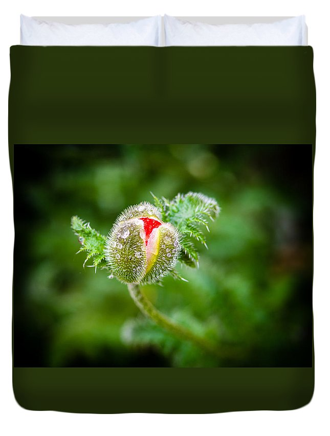 Angiospermae Duvet Cover featuring the photograph Poppy Bud by Mark Llewellyn