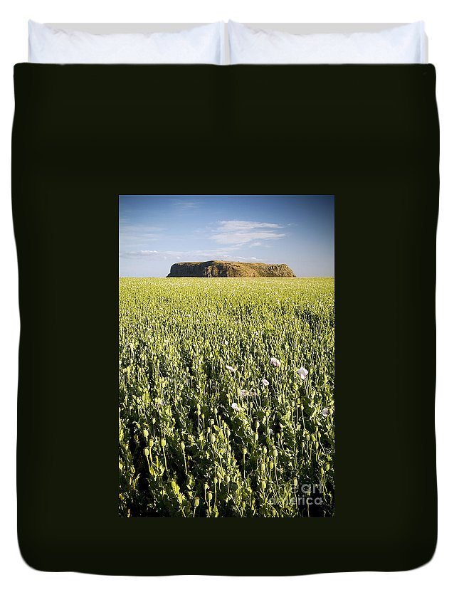 Tasmania Duvet Cover featuring the photograph Poppy Field by Tim Hester