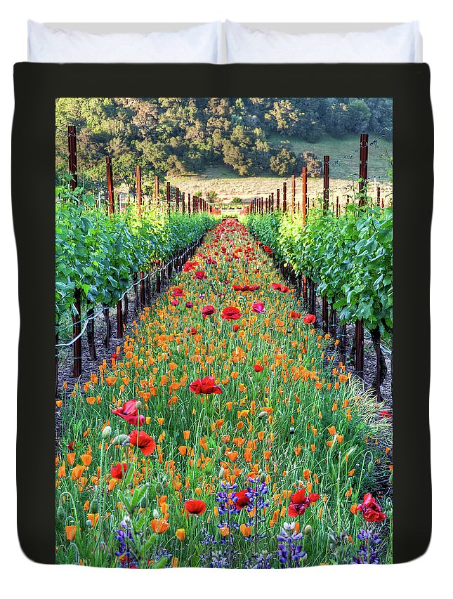 Tranquility Duvet Cover featuring the photograph Poppy Lined Vineyard by Rmb Images / Photography By Robert Bowman