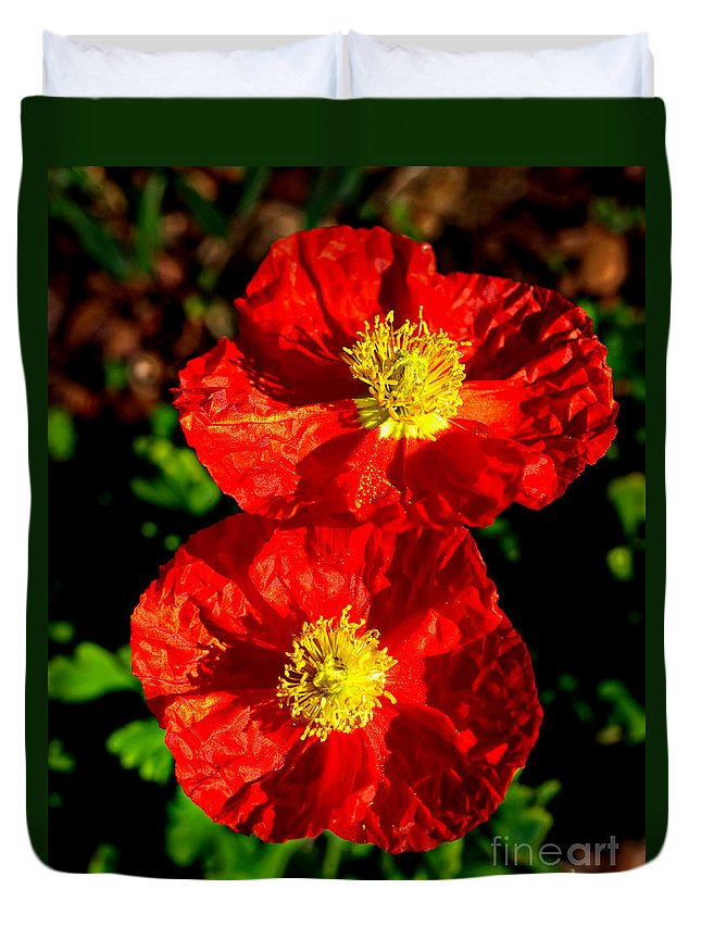Gardens Duvet Cover featuring the photograph Poppy Love by Gary Richards