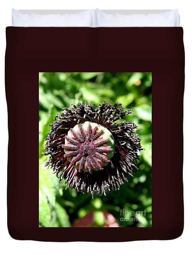 Poppy Duvet Cover featuring the photograph Poppy Seed Capsule by Christiane Schulze Art And Photography