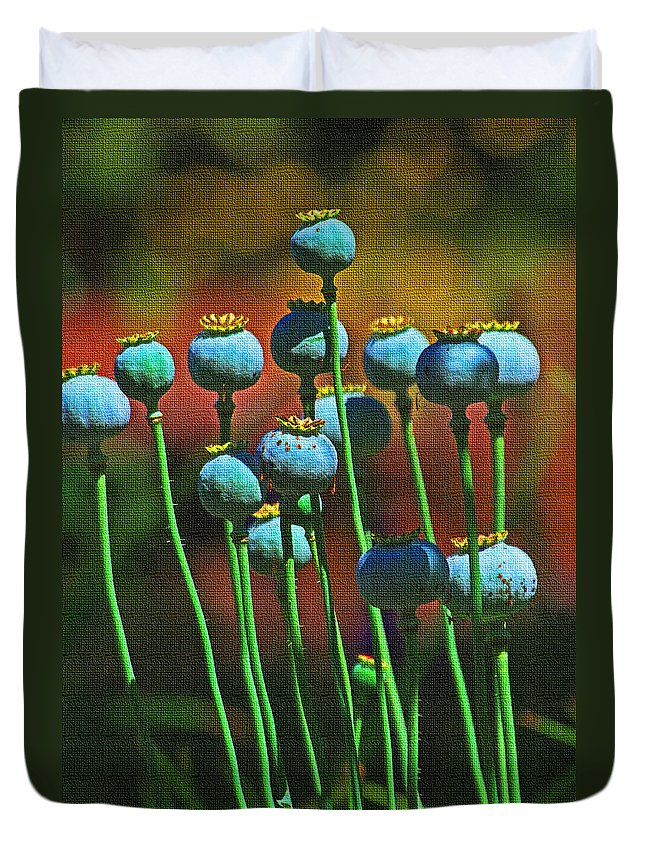 Poppy Seed Pods Duvet Cover featuring the photograph Poppy Seed Pods by Tom Janca