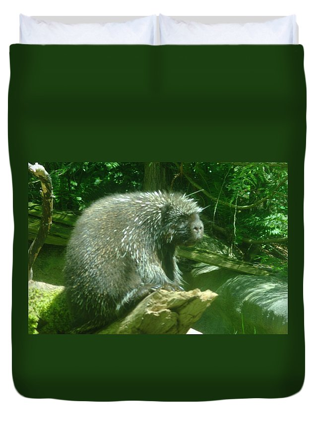 Porcupine Duvet Cover featuring the photograph Porcupine by Jeff Swan