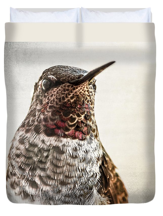 Hummingbird Duvet Cover featuring the photograph Portrait Of A Hummer by Caitlyn Grasso
