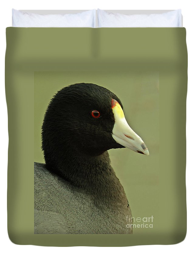 Animal Duvet Cover featuring the photograph Portrait Of An American Coot by Robert Frederick