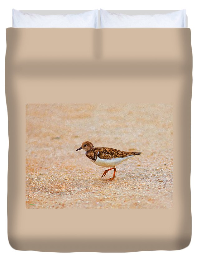 Beach Duvet Cover featuring the photograph Portrait Of The Ruddy Turnstone by John M Bailey