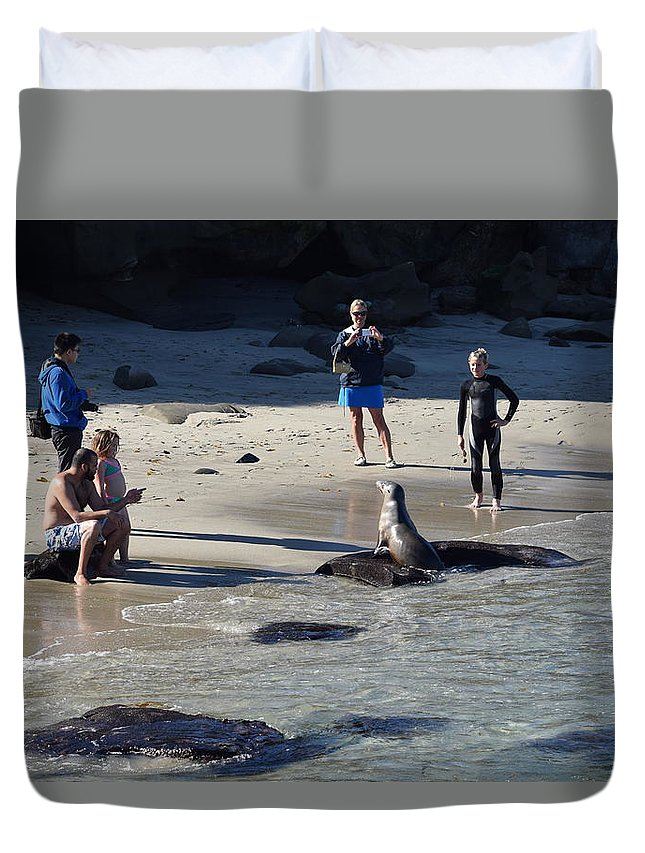 Seal Duvet Cover featuring the photograph Pose For Camera by Eric Johansen
