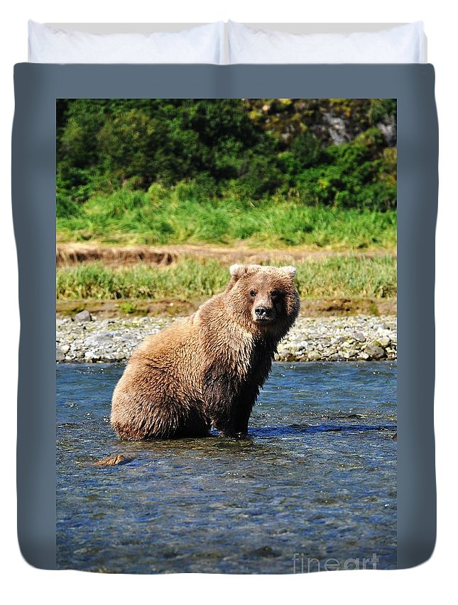 Brown Bear Duvet Cover featuring the photograph Posed Perfection by Deanna Cagle