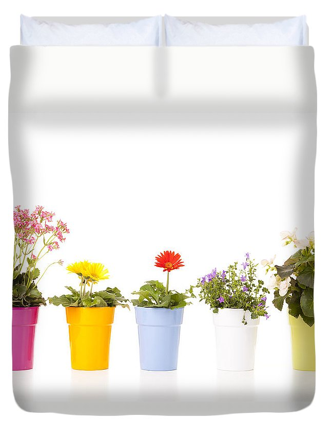 Flowers Duvet Cover featuring the photograph Potted Flowers by Alexey Stiop