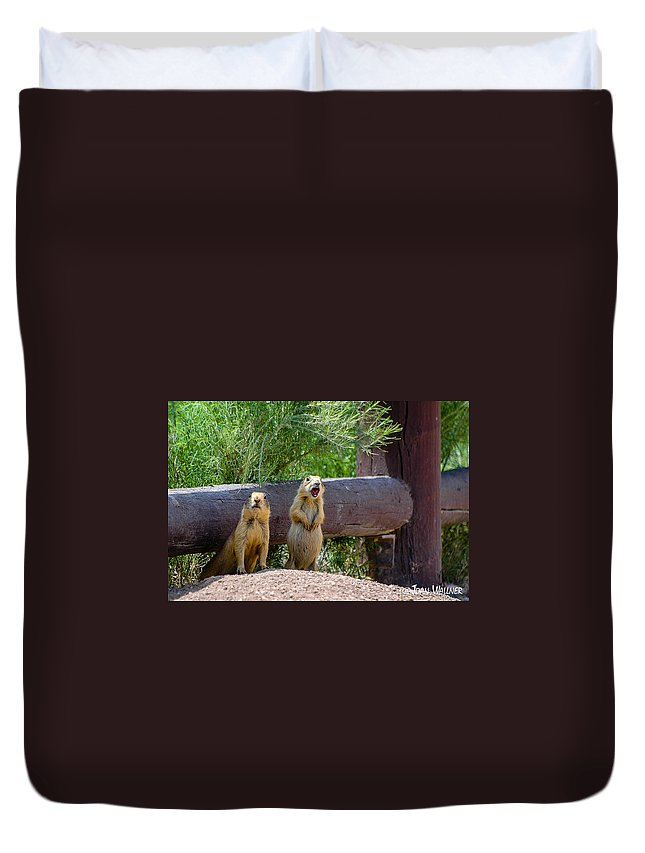 Bryce National Park Duvet Cover featuring the photograph Prairie Dogs In Bryce by Joan Wallner