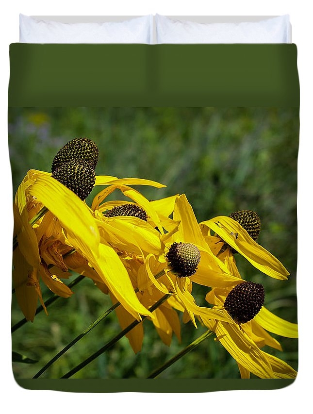 Prairie Duvet Cover featuring the photograph Prairie Flowers In Wind by Harold Hopkins