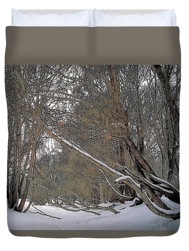 Beautiful Duvet Cover featuring the painting Prairie Winter 2 by Terry Reynoldson