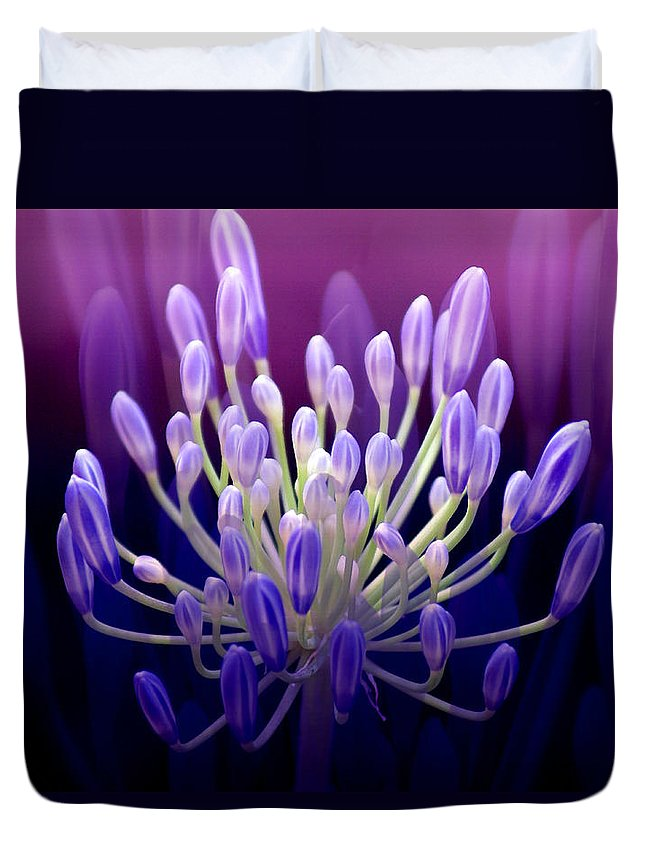 Agapanthus Duvet Cover featuring the photograph Praise by Holly Kempe