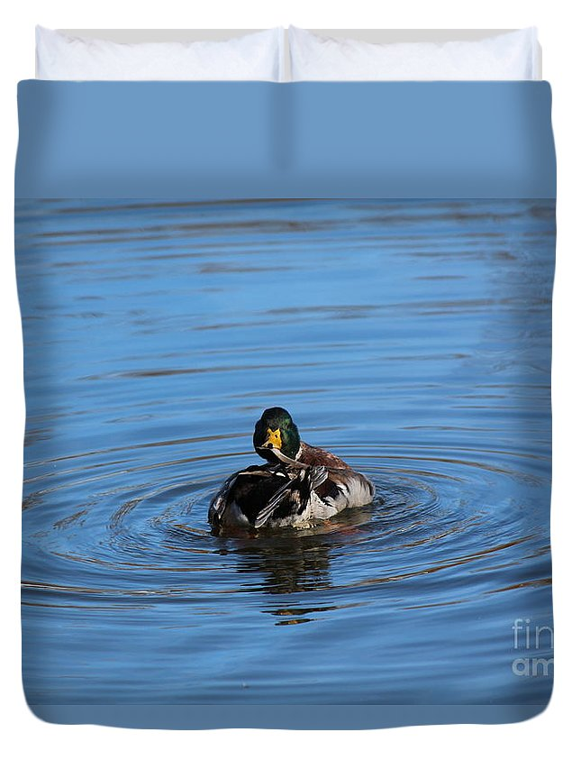 Duck Duvet Cover featuring the photograph Preening by Jamie Smith