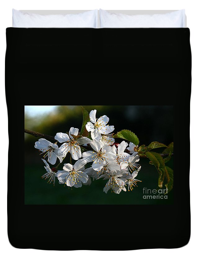 St James Lake Duvet Cover featuring the photograph Pretty Flowers by Jeremy Hayden